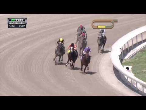 HorseCenter 2016 Kentucky Derby Watch: Gun Runner/Ziconic/Mohaymen