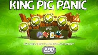 Angry Birds 2 : King Pig Panic