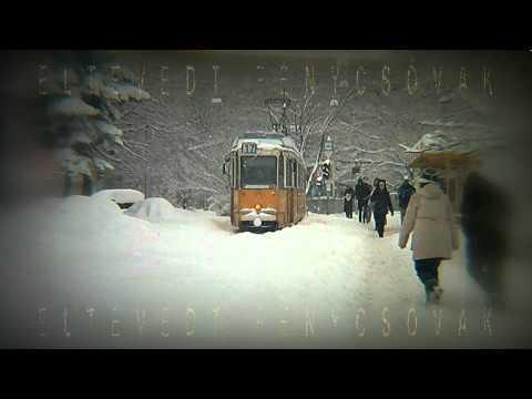 havas budapest 2009