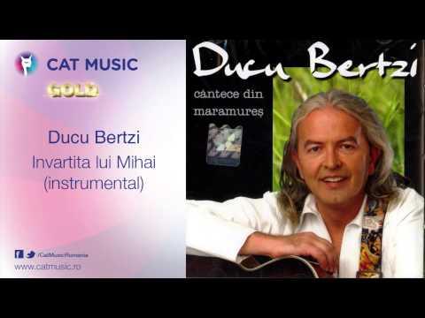 Ducu Bertzi - Invartita lui Mihai (instrumental)