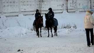 Сноуборд,9янв2013 Сюжет с конной полицией