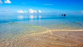 Копия видео Красота божьего мира. Путешествия по океану