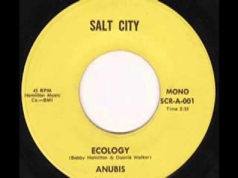 Anubis Ecology