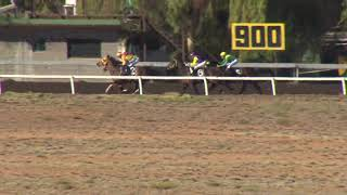 20190714 ALICE SPRINGS R6 Anniversary Cup