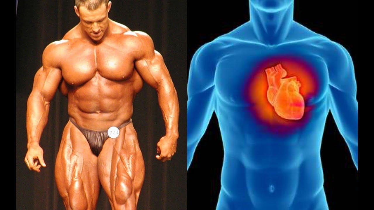 Sustainable Bodybuilding |