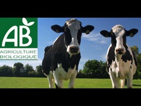 Agriculture biologique et producteurs locaux (bande annonce)