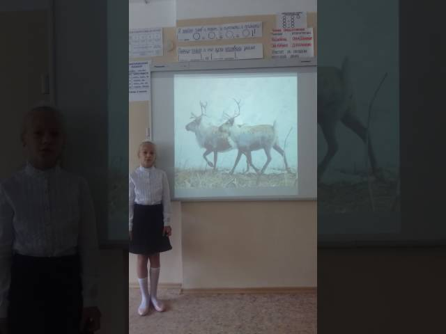 Арина Лютенко читает произведение «Густой зеленый ельник у дороги» (Бунин Иван Алексеевич)