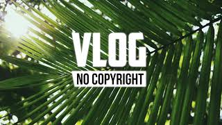 BraveLion - Sleeping Jungle (Vlog No Copyright Music)