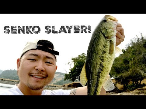 SAN FRANCISCO'S BEST KEPT BASS FISHING SECRET!