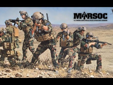 "United States Marine Raiders | 2018 | "" Bad Company """