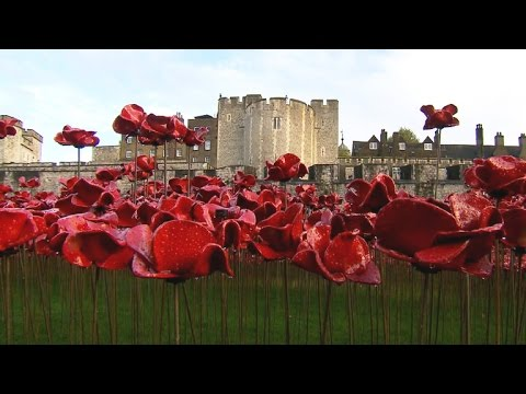 British Use Poppies To Commemorate WWI
