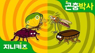 착한 친구 나쁜 친구 | 사람에게 이로운 곤충과 해로운 곤충 알아보기 | 곤충박사★지니키즈