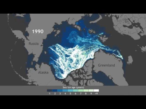 Dwindling of Arctic's oldest ice since 1990