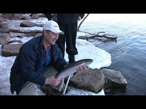 Shoreline Early Spring Lake Trout (Steelhead) - How To Catch Trout From Shore