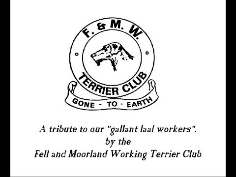 Fell and Moorland Terrier Club filmed late 90's