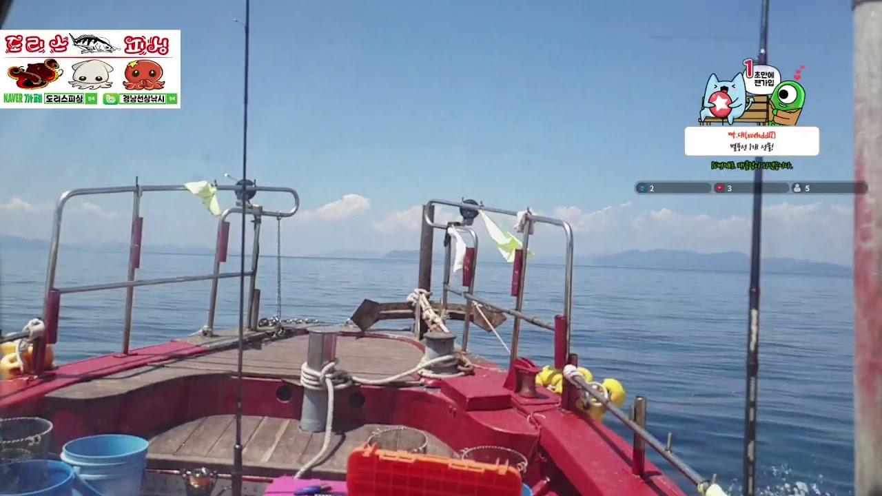 도리스피싱 무늬오징어 탐사2
