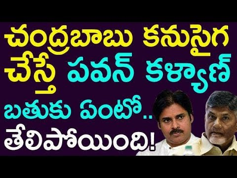 What Happens If Chandrababu Naidu Concentrate On Pawan kalya