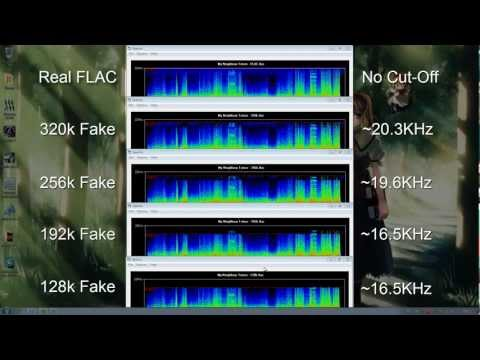 How To Spot A Fake FLAC