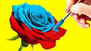 видео С цветами