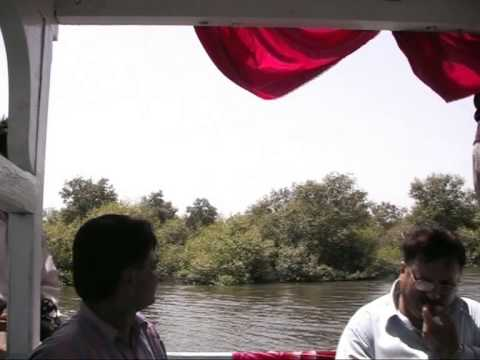 Amazing trip to the Mangroves in Karachi Pakistan (summer 2009)