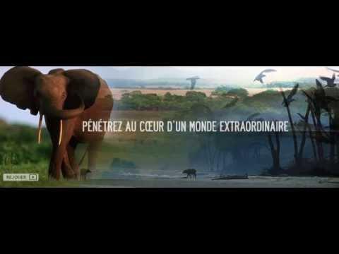 Les 13 parcs nationaux du Gabon