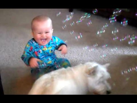 Babies Laughing Hysterically At Dogs Eating Bubbles Compilation || NEW HD