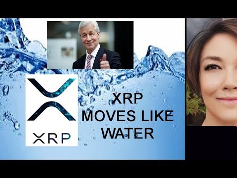 Thank you Jamie Dimon for Giving XRP & Crypto this JP Morgan Coin ~ a Stroke of LUCK!