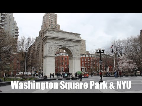 A Guide to New York City: NYU
