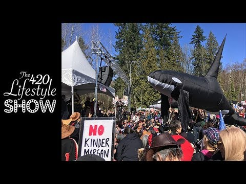 The 420 Lifestyle: Let's Smoke the Kinder Morgan Pipeline