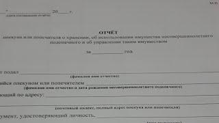 vLOG 227 Отчет опекуна - Что это такое ?
