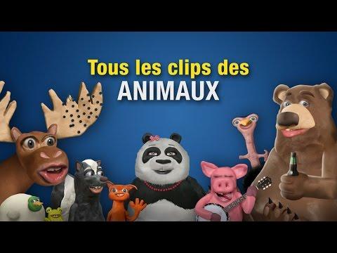 Tous les clips des animaux