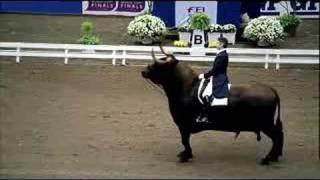 Schweppes Bull