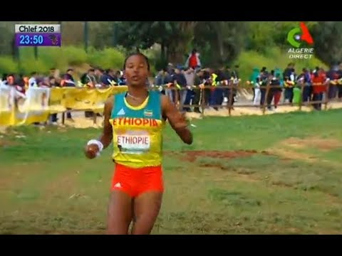 ETHIOPI wins MIXED RELAY 2km x 4  -  AFRICA CROSS COUNTRY CHAMPIONSHIP CHLEF 2018