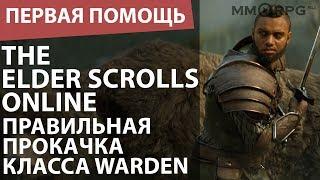 The Elder Scrolls Online. Правильная прокачка класса Warden. Первая помощь