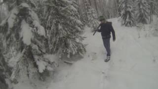 Охота на зайца в Карелии