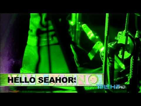 Hello Seahorse - Vive Latino 2014 HD