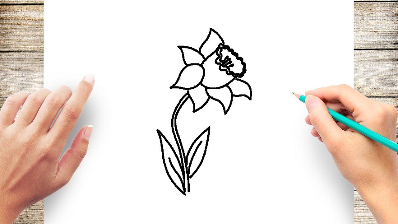 21+ Simple Daffodil Cartoon Pics