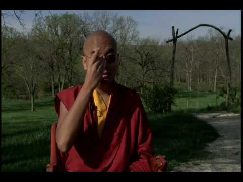 Yongey Mingyur Rinpoche on Brainwave Research