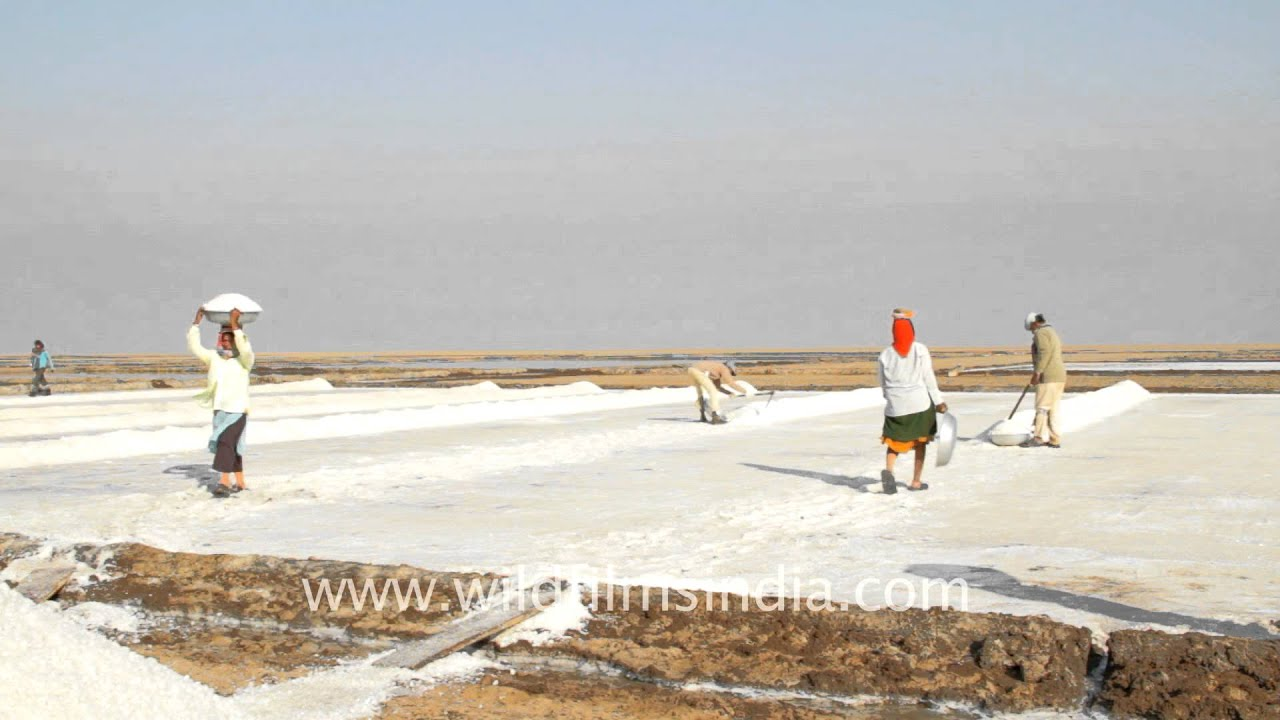This is a salt pan Gujarat