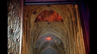 Ситуация у собора Парижской Богоматери