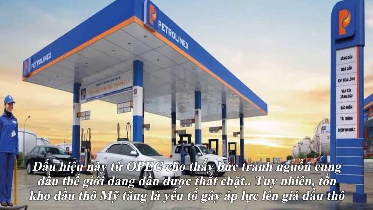 Giá xăng dầu hôm nay 11/10: Tiếp tục đà tăng sau khi OPEC bật mí tái cân bằng thị trường năm 2020