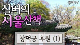 [3월 추천 서울 여행] Seoul Trip - 창덕궁…
