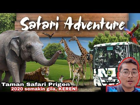 taman-safari-prigen-2020-|-semakin-sore-semakin-gila.-|-review-dan-harga-tiket-taman-safari.