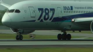 熊本空港 ALL NIPPON AIRWAYS BOEING787-8 JA821A
