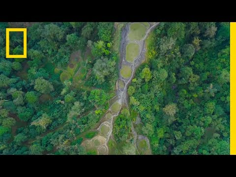 Exploring Ciudad Perdida | Lost Cities With Albert Lin