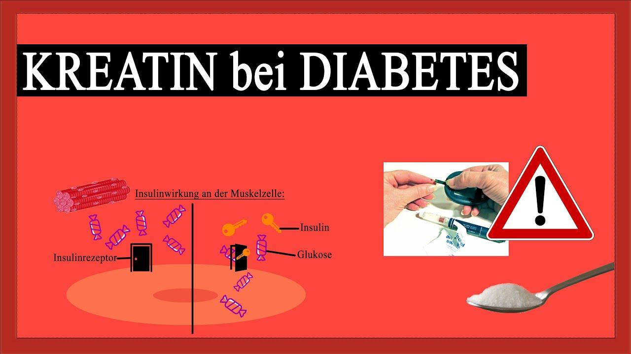 Kreatin gefährlich bei Diabetes? Meine Erfahrung und Fakten ...