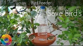 Hummingbird feeder, Bird Feeder from Water Bottle, Best Technic for Water Feeder.