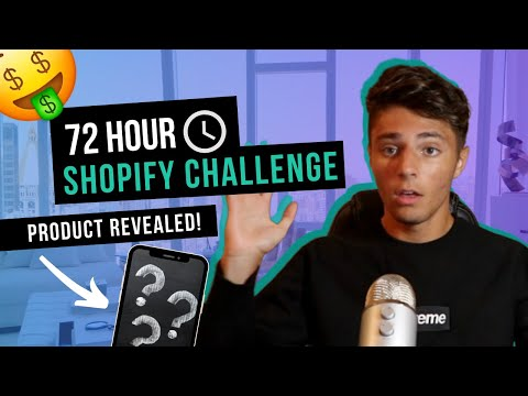 72 Hour High Ticket Shopify Dropshipping Challenge (product revealed)