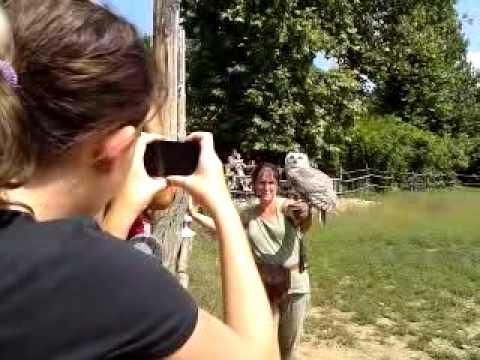video-2011-07-31-12-05-29.mp4