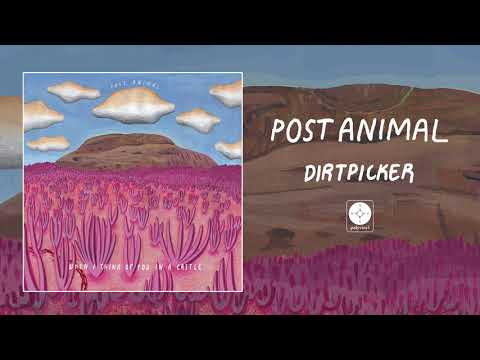 Post Animal - Dirtpicker [OFFICIAL AUDIO]